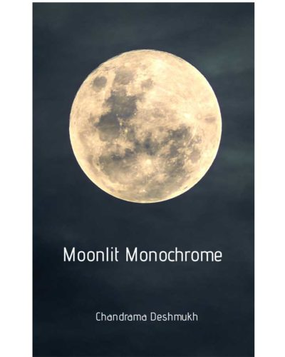 Moonlit Monochrome