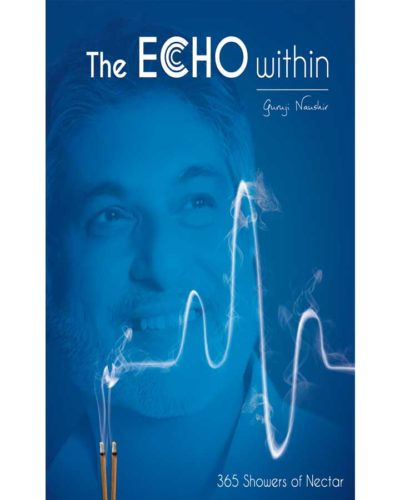 The echo within book front cover
