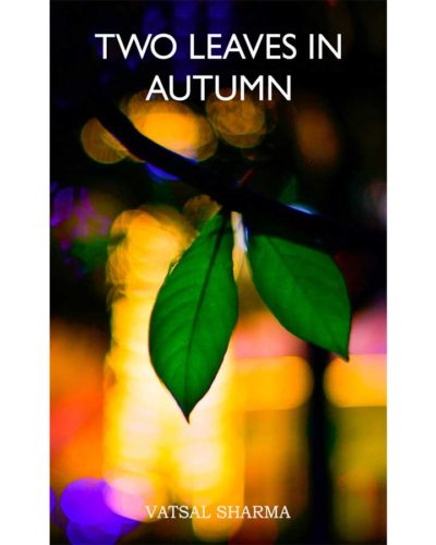 Two leaves in autumn book front cover
