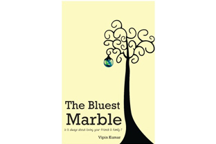 the bluest marble